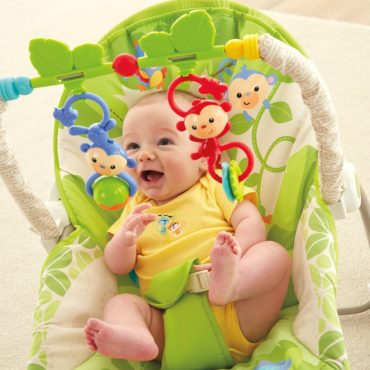 Fisher Price Infant To Toddler Rocker Chair 2 Months To 2 Years Old
